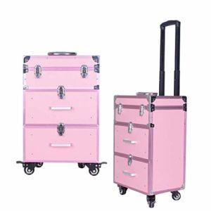 TONGSH Caisse de Train de Maquillage Professionnel/Caisse cosmétique/Chariot/Valise/Chariot de Grande capacité de boîte avec 2 tiroirs glissants Lisses (Color : Pink)