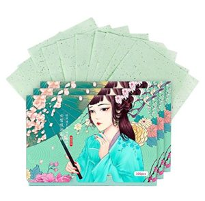 double-face sur le visage Oil Control Blotting Papers Maquillage Blotting Papers 300 feuilles (C)