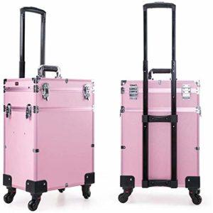 WSJTT Train Roulant Cas N ° 3-en-1 Maquillage Portable Train Malette De Maquillage Professionnel Organisateur Maquillage Voyager Trolley Panier Tronc (Color : Pink)