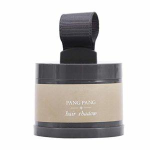 4Color Front Curve Embellir Outil De Maquillage Beauté Poudre De Réparation De Cheveux En Poudre Hairline Shadow(2#)