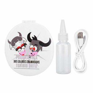 Nano pulvérisateur, banque de puissance de lumière LED 25 ml, lumière de beauté pour miroir de maquillage de banque de puissance de pulvérisateur