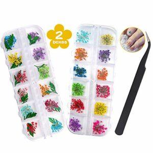 Fleurs Séchées pour Ongles – 2 Boîtes (36 Pièces) de Fleurs Séchées pour Travaux Manuels en Résine, Nail Art Séchées Fleurs Décoratives Ensemble Accessoires avec 1 Pince Courbée