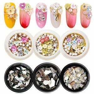 EBANKU 6 boîtes Fleurs Séchées Nail Décoration Fleurs de Style Clous à Ongles en or Cristaux de Galets Concassés Gemmes Vernis à Ongles Nail Art Outils de Bricolage pour Accessoires de Beauté