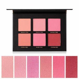 Gowsch Palette de Fard à Joues en Poudre cosmétiques 6 Couleurs Nuances de Fard à Joues Professionnel beauté du Visage Maquillage cosmétique Blush
