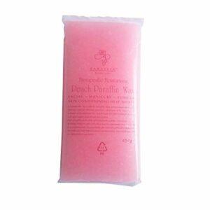 TENGGO 450G Paraffin Wax Bath Nail Art Tool for Nail Hands Paraffin Art Care Bain pour Les Mains Wax Heater