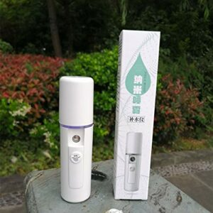 Dispositif de réapprovisionnement en eau Doasawn Charge USB Nano Spray Steam Face Device Humidificateur facial portable Appareil de beauté à jet froid Nébuliseur portable