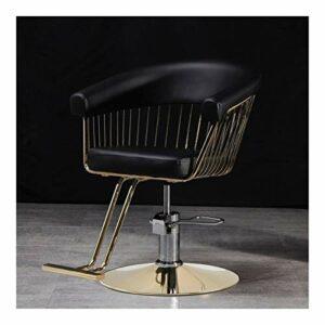 HLZY Chaises de Salon pour Coiffeur, Chaises de Tatouage chaises de Salon de beauté Robustes, Ascenseur Chaise de Coiffeur Rotatif Mode Salon de Coiffure (Color : A)