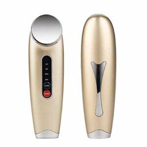 Introducteur d'ions négatif multifonctionnel, petit équipement de beauté ultrasonique d'introduction d'instrument magnétique d'introduction magnétique de micro-vibration