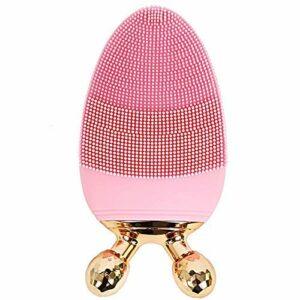 LIUCHANG Vibration Rouge Visage nettoyant Brosse Machine nettoyant nettoyant nettoyant Brosse Brosse Noire halkhead Laver la Peau Soins Masseur USB liuchang20