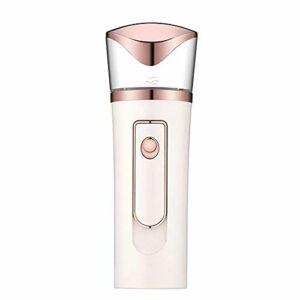 Portable Nano Beauty Spray Hydratant Instrument De Beauté Humidificateur De Blessure Solaire Peut Être Utilisé Comme Puissance Mobile (Color : White)