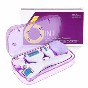 Fixget Microneedle Facial Roller, Derma Roller 1,0mm/0,5mm/0,25mm/1,5mm pour de la Pousse des Cheveux, Corps, Visage Avec Aiguilles