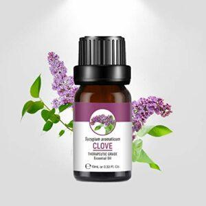 Luckine Huiles essentielles 10 ml, huiles d'aromathérapie de qualité supérieure pour diffuseur, humidificateur, massage, soins de la peau et des cheveux