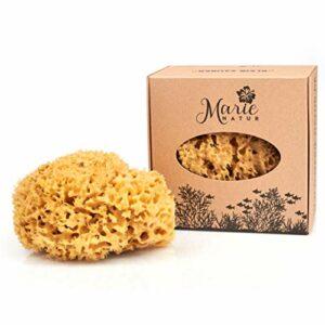 Marie Natur Éponge naturelle de 18 cm – Sans plastique – Éponge de bain naturelle de la Méditerranée – Qualité supérieure.
