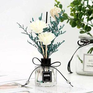 YGWALL Désodorisant Ménage Intérieur Aromathérapie Chambre Salle De Bains Toilette Déodorant Durable Parfum Chambre Parfum Huile Essentielle