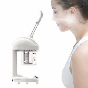 Pulvérisateur facial, spray hydratant, spray facial, humidificateur à vapeur, nettoyage hydratant, beauté de la peau, pulvérisateur hydratant en profondeur, pulvérisateur de beauté