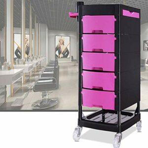 TYWZJ Chariot de Rangement à 5 tiroirs, pour la Papeterie et l'organisation du Bureau à Domicile ou Le Salon, Le Maquillage, la Coiffure et Les Accessoires de beauté roulettes de Conception Mobil