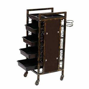 TYWZJ Chariot de Salon, Chariot de Chariot de Support de Stockage de Roue de roulement en métal Amovible à 4 Niveaux pour Salons de Coiffure Salons de beauté avec 4 tiroirs