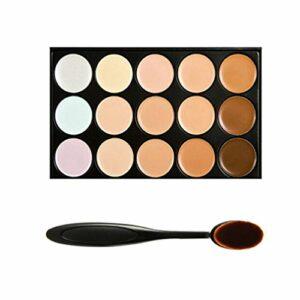 Boolavard Professional 15 Couleur Concealer Camouflage Visage Contour des Yeux Crème Palette de maquillage avec Cosmetics Oval Maquillage Brush (15 couleurs)