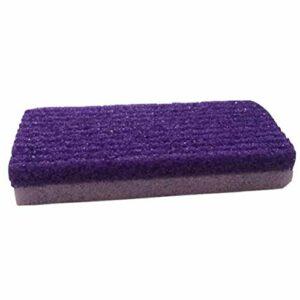 Healifty Pierre ponce pour laveur de pieds Peau morte, dure, correcteur de callosités, pédicure, râpe, violet