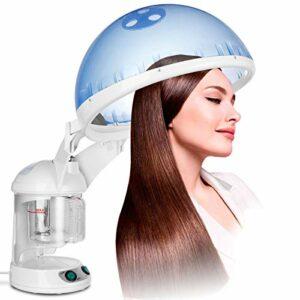 NSWD Ozone Hair & Facial Steamer Facial Sauna, Facial Steamer Salon Spa Machine, pour Les Cheveux Et Le Visage, pour Le Sauna de Visage Spa Hydratant