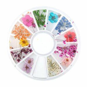 Ongles fleurs séchées, 12 types de fleurs sèches naturelles naturelles colorées Set Nail Décoration Arts de manucure avec boîte de roue pour la décoration de téléphone, cheveux, lunettes, ongles, etc