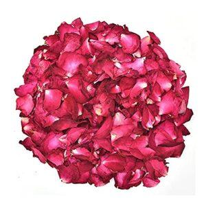 Pétales de rose rouge séchées Fleur Rose réel naturel Pétale 100 g Bain à sec Pétale Spa Douche aromathérapie Whitening Les plantes (Color : 100g rose petals)